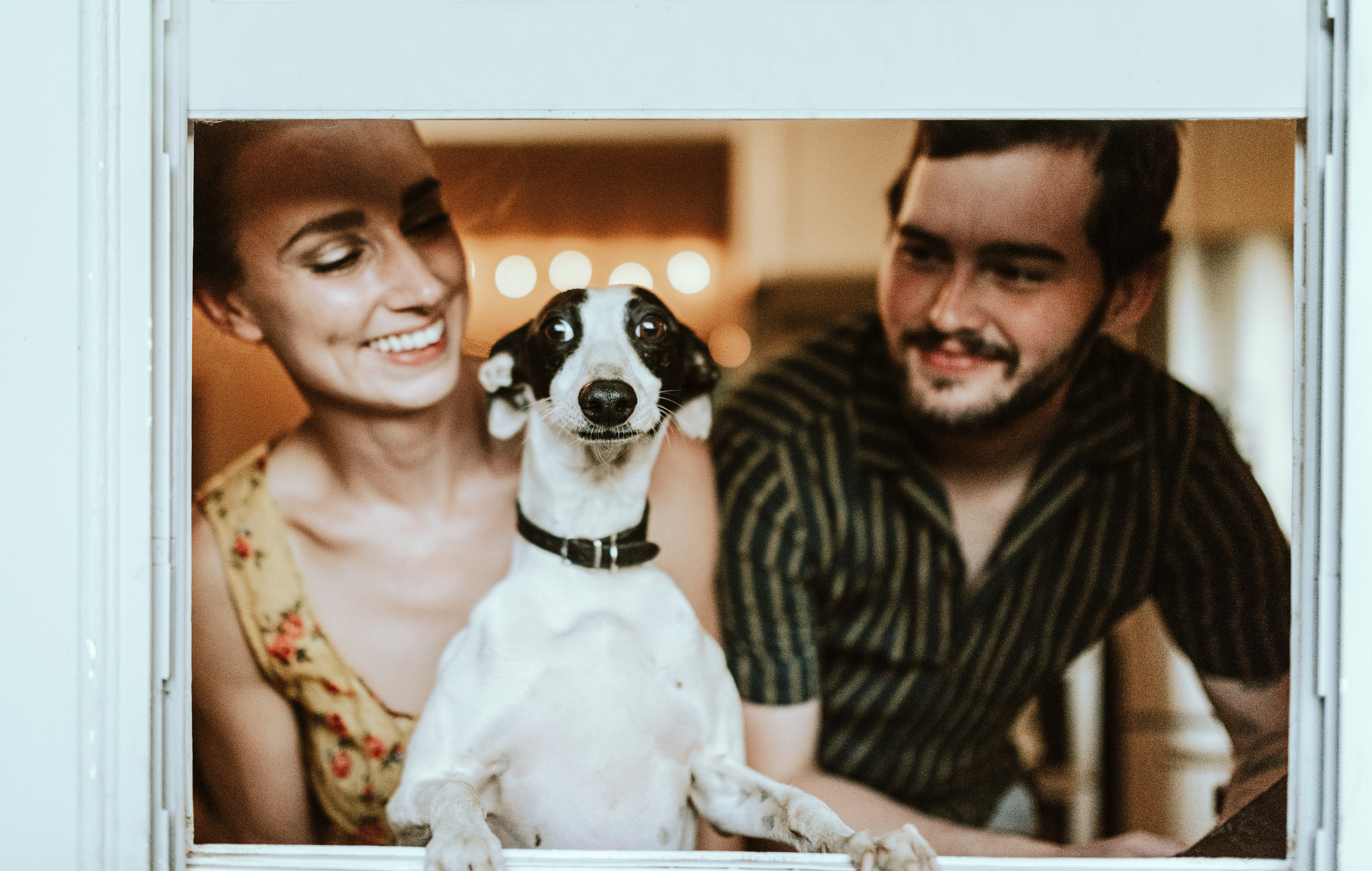a couple with their dog; pre-employment assessment